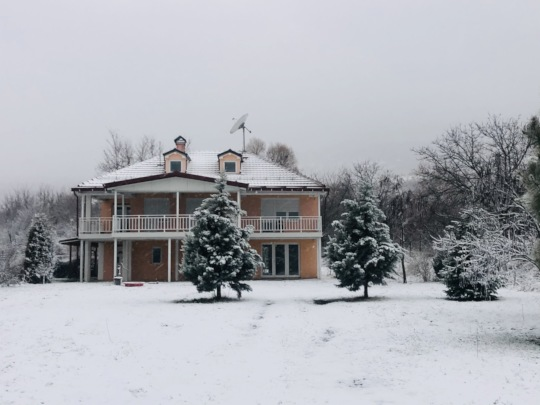 First Snow of 2021!