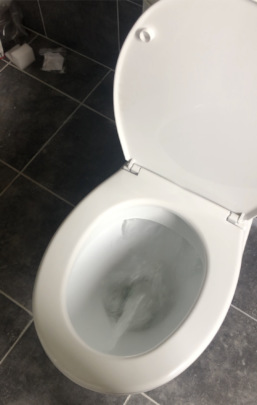 Yay!!! We  have working toilets!