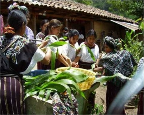 Building comprehensive farms in Guatemala