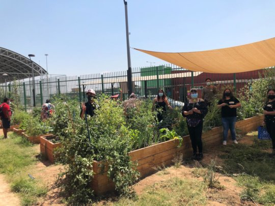 Students of the School For All in the urban garden