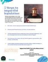 5 Ways to Impact legislation (PDF)