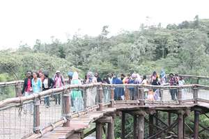 The Heshima girls cross the expansive bridge
