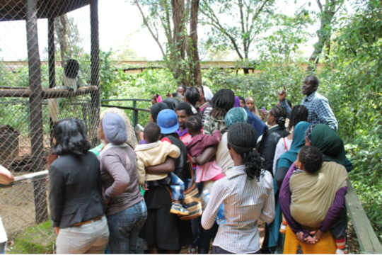 The Safe House residents admiring the monkeys