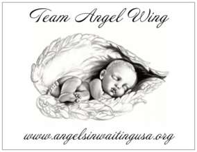 Team Angel Wing