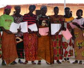 Train 300 Liberians in literacy and democracy