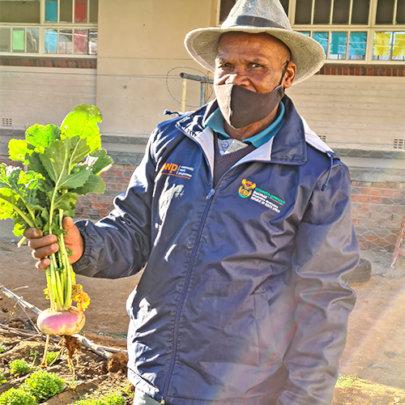 Proud gardener shows off first beet harvest