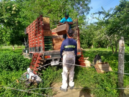 The truck with the first hives arriving!