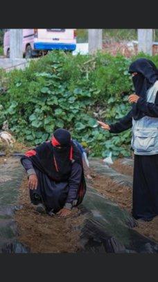 women taking field training on modern agricul tool