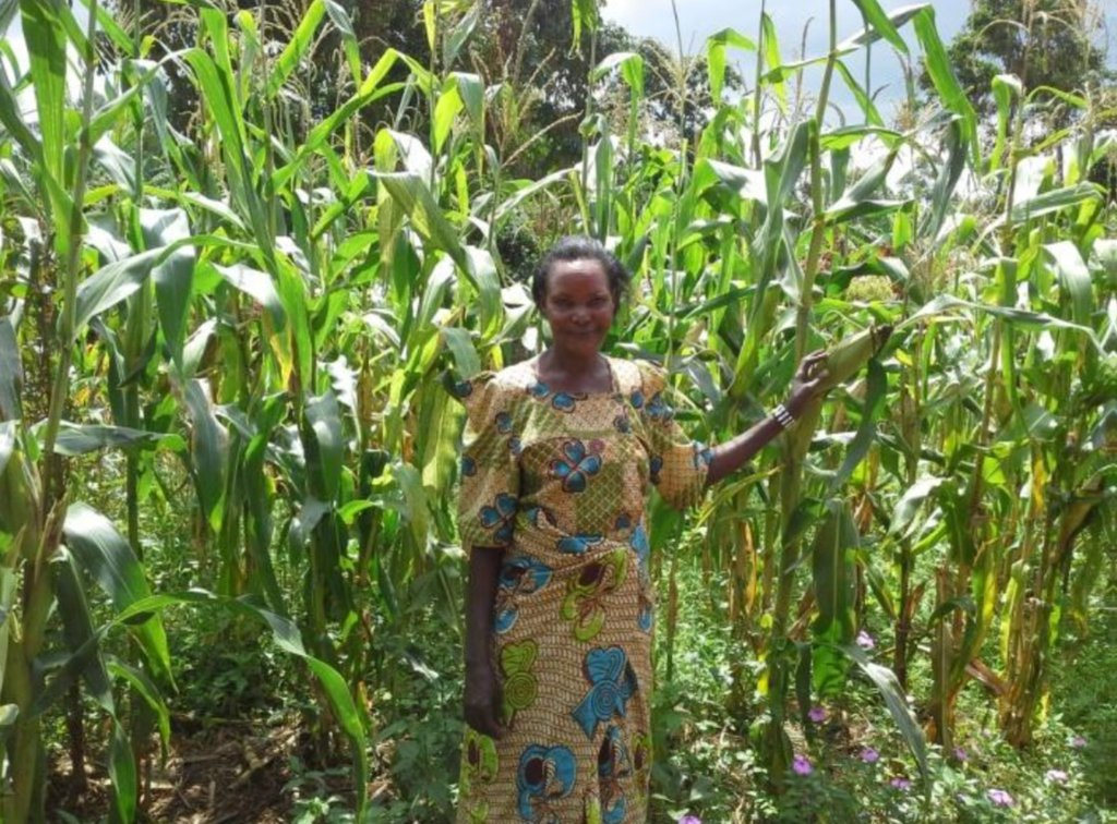 Jolly standing in her maize garden