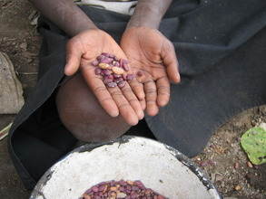 Seeds Ensure Food Security
