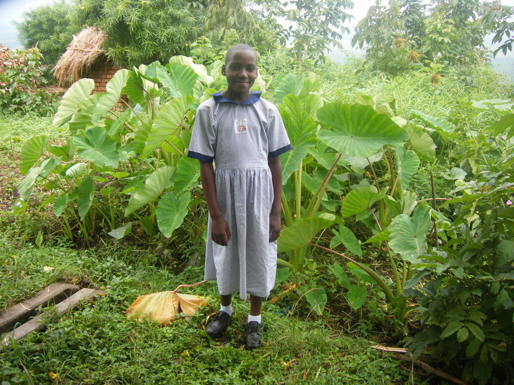 Girl Child Education Support Initiative