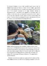 Globalgiving_Report.pdf (PDF)