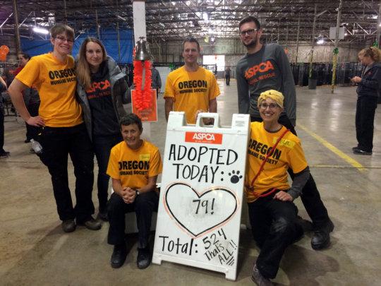 Adoption Success!