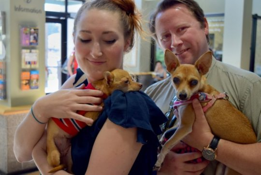 Eevee with her new Portland family