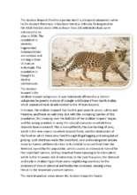 Arabian_Leopard.pdf (PDF)