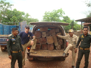 22 Logs of Illegal Timber Confiscated