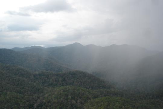 The Southern Cardamom National Park landscape