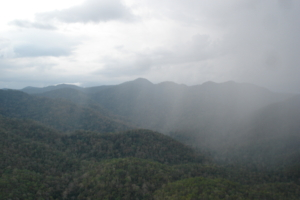 The Southern Cardamom National Park landscape