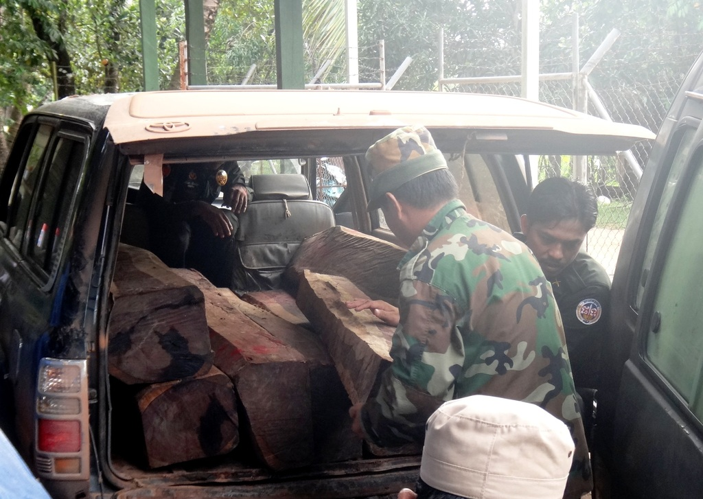 Confiscated Illegal Timber