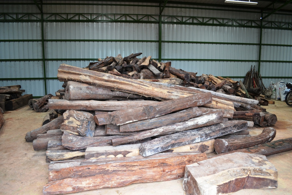 Timber Confiscation