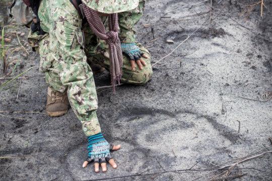 Tracking Endangered elephant footprints