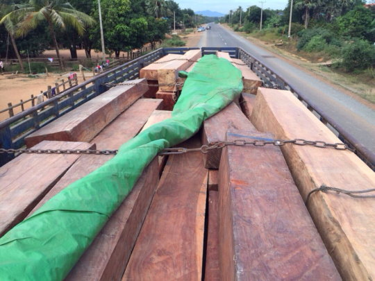 47 tons of precious timber that was confiscated
