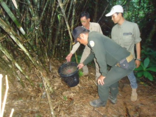Rangers find bucket in the forest along the road