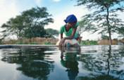Water and Food for 2,000 People in Rural Senegal