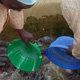 Grown fish feeding thousands