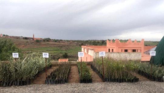 Renewable Energy in a Community-Interfaith Nursery