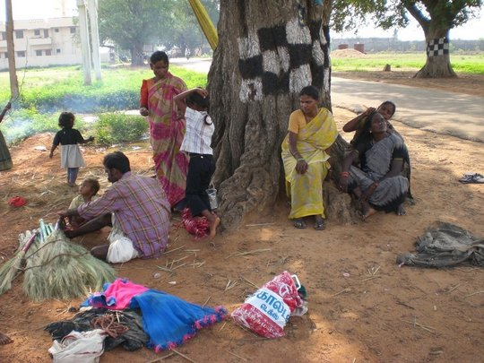 Migrants live under tree and making brooms