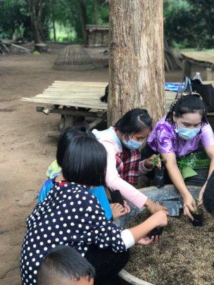 Children are planting tree