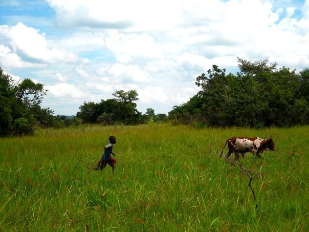 Multifunction Platforms: Energizing Rural Uganda