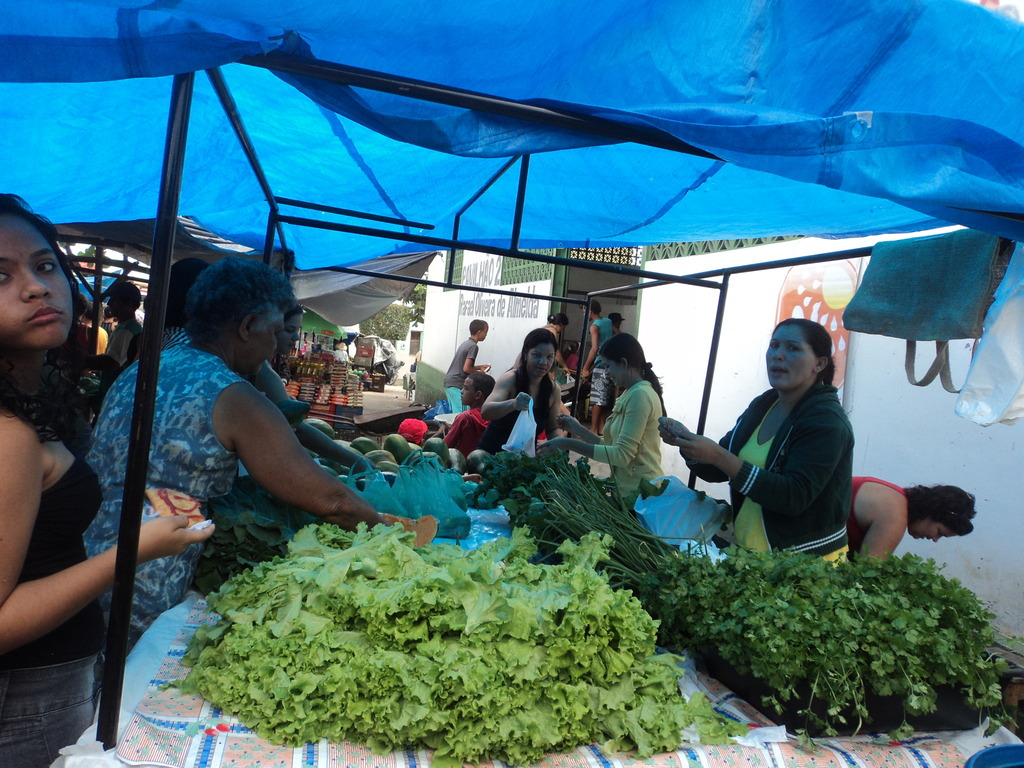 Farmers selling products in the Pintadas Open Fair