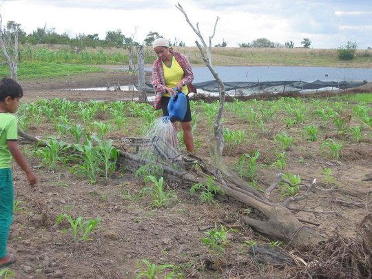 Hand irrigation