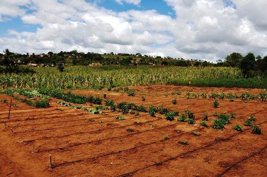 Efficient irrigation technologies