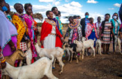 Sowing Maasai Women and Girls Future