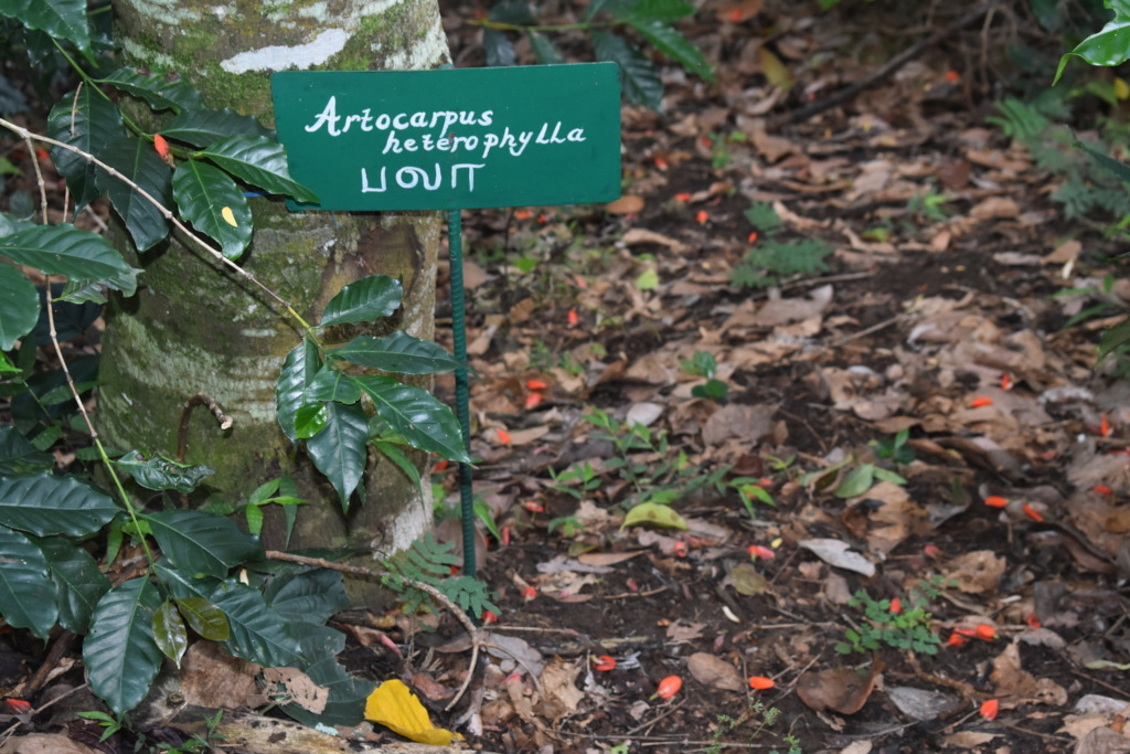 Signboards bearing names of important food plants