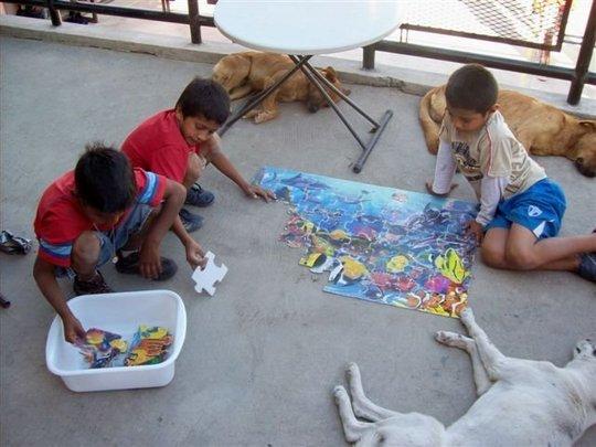 Spay/Neuter Clinic in Honduras