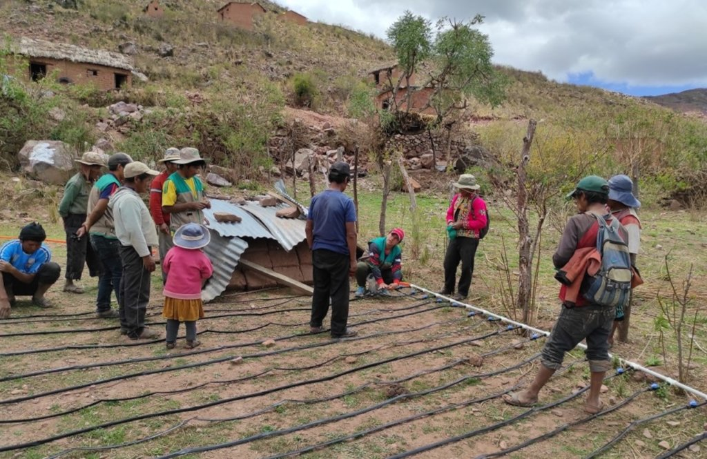 Combating Food Insecurity in Altitudes of Bolivia