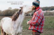 Natural horsemanship for Moldova's village horses