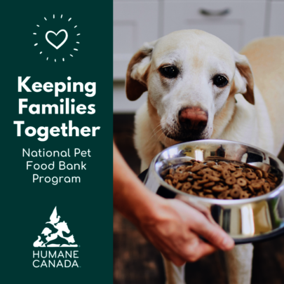 National Pet Food Bank Program