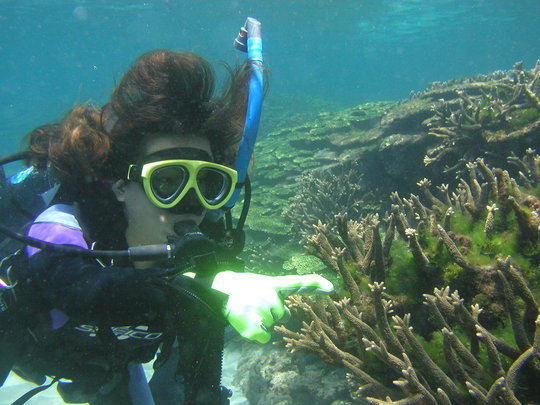 Check Coral Reef in 6 Hotspots of Taiwan