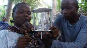 Use Solar, Save Lives-10000 solar lamps-12 months