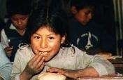 Increasing Food Supply for Quechua Communities