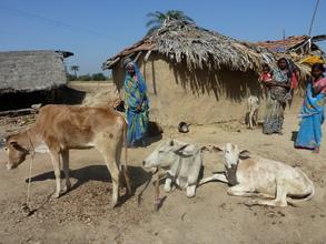 Health Project Village in Bihar