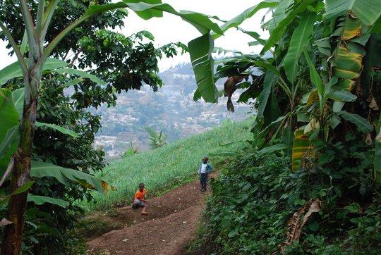 The steep Haitian mountains
