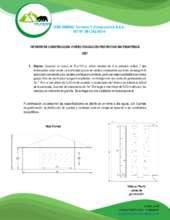 Constructor Report (PDF)