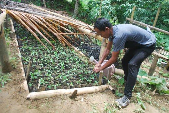 providing farming inputs