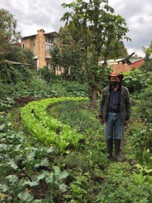 Pedro and his farm